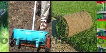 Обслуговування зелених насаджень